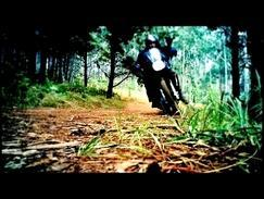 Honda Transalp XL 600 V - Stand up wheelie top tip