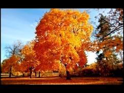 Скачать минусовку осень чудная пора